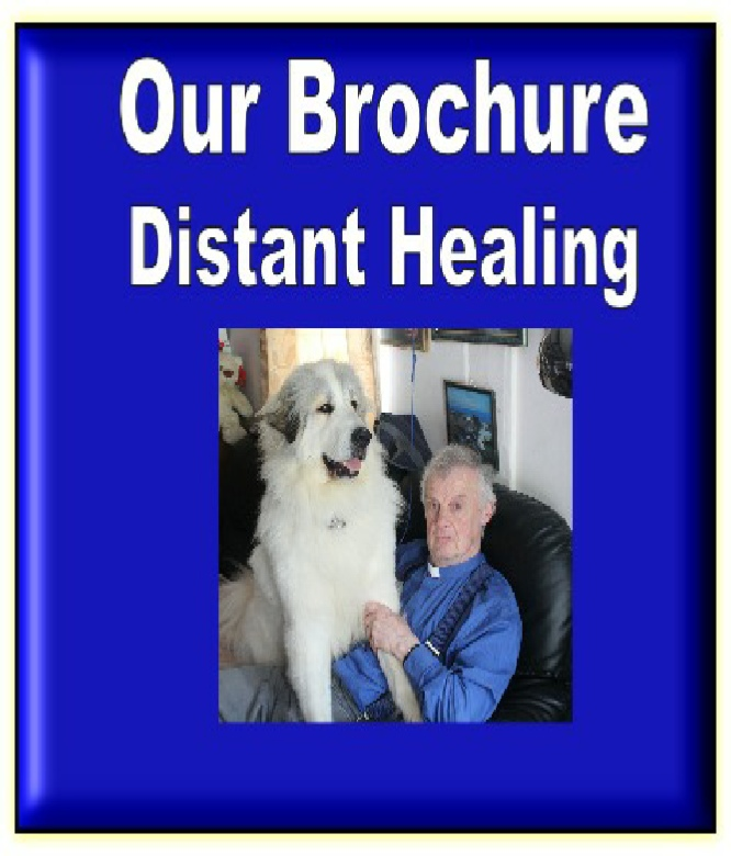 2019   CHARITY  DISTANT HEALING BROUCHURE.pdf